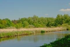 Bujny zieleni granicy Kanałowy ` De Moer ` Zdjęcia Stock