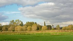 Bujny zieleni pola z drzewami na chmurnym dniu w Flamandzkiej wsi zdjęcia royalty free