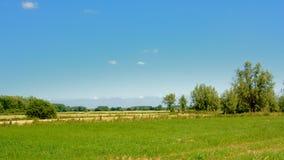 Bujny zieleni pole z drzewami pod jasnym niebieskim niebem w Kalkense Meersen rezerwacie przyrody, Flandryjskim, Belgia zdjęcia stock