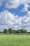 Bujny zielona sceneria z dramatycznymi chmurami, holandie Zdjęcie Royalty Free