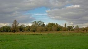 Bujny zielone łąki z drzewami na chmurnym dniu w Flamandzkiej wsi obrazy royalty free