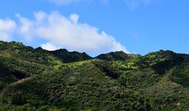 Bujny zielone góry w Kauai Hawaje Zdjęcia Stock