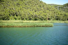 buk克罗地亚krka国家公园skradinski瀑布 免版税库存图片