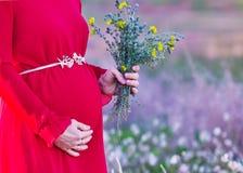 Buk av en gravid kvinna i en klänningnärbild royaltyfri bild