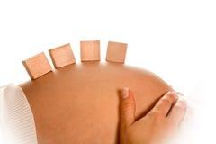 buken blockerar gravid Arkivfoton