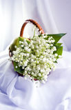 Buket of lilies of the valley Royalty Free Stock Photography