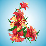Buketiz liljor Royaltyfri Fotografi