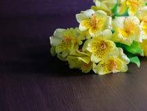 Bukett av Alstroemeria Royaltyfria Bilder