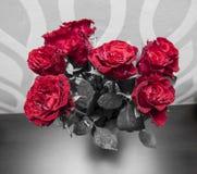 Bukett av att blomstra mörker - röda rosor i vas royaltyfri bild