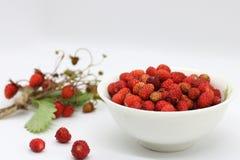 Bukett av bärnärbilden för lös jordgubbe royaltyfria bilder