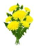 Bukett av blommamaskrosen Royaltyfri Bild