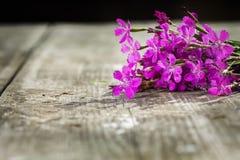 Bukett av blommor Fotografering för Bildbyråer