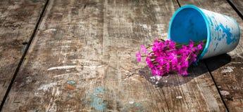 Bukett av blommor Royaltyfri Fotografi