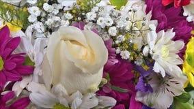 Bukett av blommor, färger som ska ges som en gåva stock video