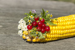 Bukett av blommor och bär med havre Royaltyfri Fotografi