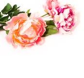 Bukett av blommor på en vitbakgrund Arkivfoto