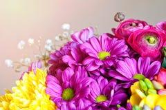 Bukett av blommor Vykortromantikerbakgrund Makro Royaltyfri Bild