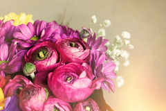 Bukett av blommor Vykortromantikerbakgrund Makro Arkivfoto