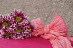 Bukett av chrysanthemums Royaltyfria Foton