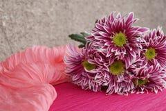 Bukett av chrysanthemums Royaltyfri Bild
