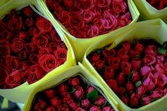Bukett av closeupen för röda rosor Royaltyfria Foton