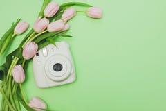 Bukett av den försiktiga rosa tulpan och kameran på ljus - grön bakgrund royaltyfri fotografi
