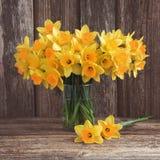 Bukett av den nya vårgulingpingstliljan på träbakgrund Royaltyfri Bild