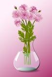 Bukett av den rosa krysantemumet i vas Royaltyfria Foton