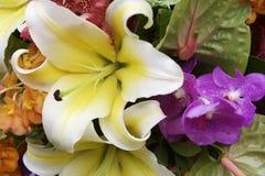 Bukett av färgglade tropiska blommor Arkivfoton