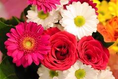 Bukett av färgrika blommor - rosor och tusenskönor Arkivfoton