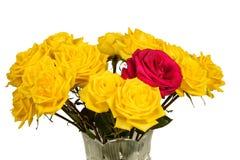 Bukett av gula rosor i en isolerad vas Arkivfoto
