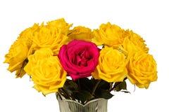 Bukett av gula rosor i en isolerad vas Fotografering för Bildbyråer