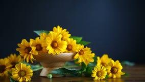 Bukett av gula stora tusenskönor
