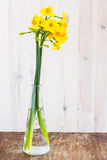 Bukett av guling som lilly lånas (påskliljan) på en träyttersida Arkivbild