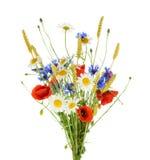 Bukett av härliga blommablåklinter, kamomillvete och royaltyfri bild
