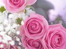 Bukett av härliga blommor som en bakgrund Arkivbild