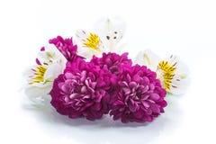 Bukett av härliga krysantemum och lysianthusen Royaltyfria Bilder