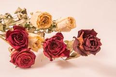 Bukett av härliga torkade gula och röda rosor royaltyfria bilder