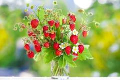 Bukett av jordgubbar royaltyfri foto