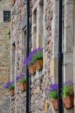 Bukett av lavendel i en lantlig dekorativ inställning Royaltyfri Bild