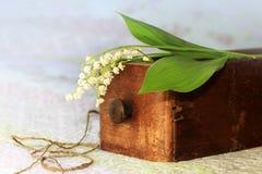 Bukett av liljekonvaljer Royaltyfria Bilder