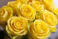 Bukett av nya gula rosor Arkivfoto