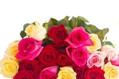 Bukett av nya mångfärgade rosor Arkivbild