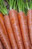 Bukett av nya organiska morötter. royaltyfri fotografi