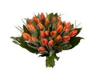Bukett av olika röda och orange tulpan royaltyfria foton