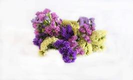 Bukett av omväxlande blommor arkivbilder