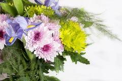 Bukett av omväxlande blommor fotografering för bildbyråer
