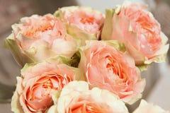 Bukett av ovanliga variationer av rosor Royaltyfri Foto