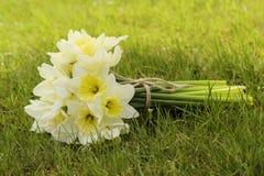 Bukett av påskliljor på nytt grönt gräs royaltyfri fotografi