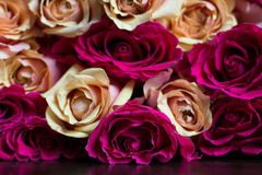Bukett av persika- och rosa färgrosor Royaltyfria Bilder